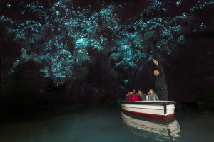 waitomo-glowworm-caves